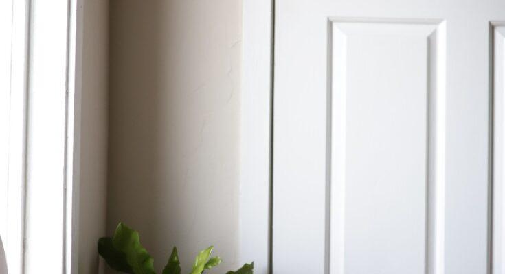 Idealne białe drzwi