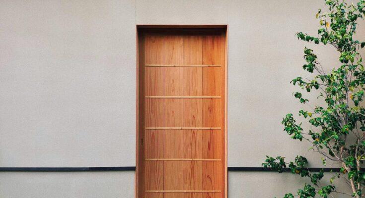 Jakie wybrać nowoczesne drzwi wejściowe
